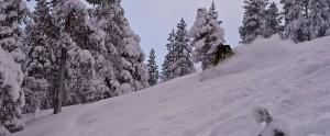 Knomppi hiihtää hyvää putikkaa Pyhällä