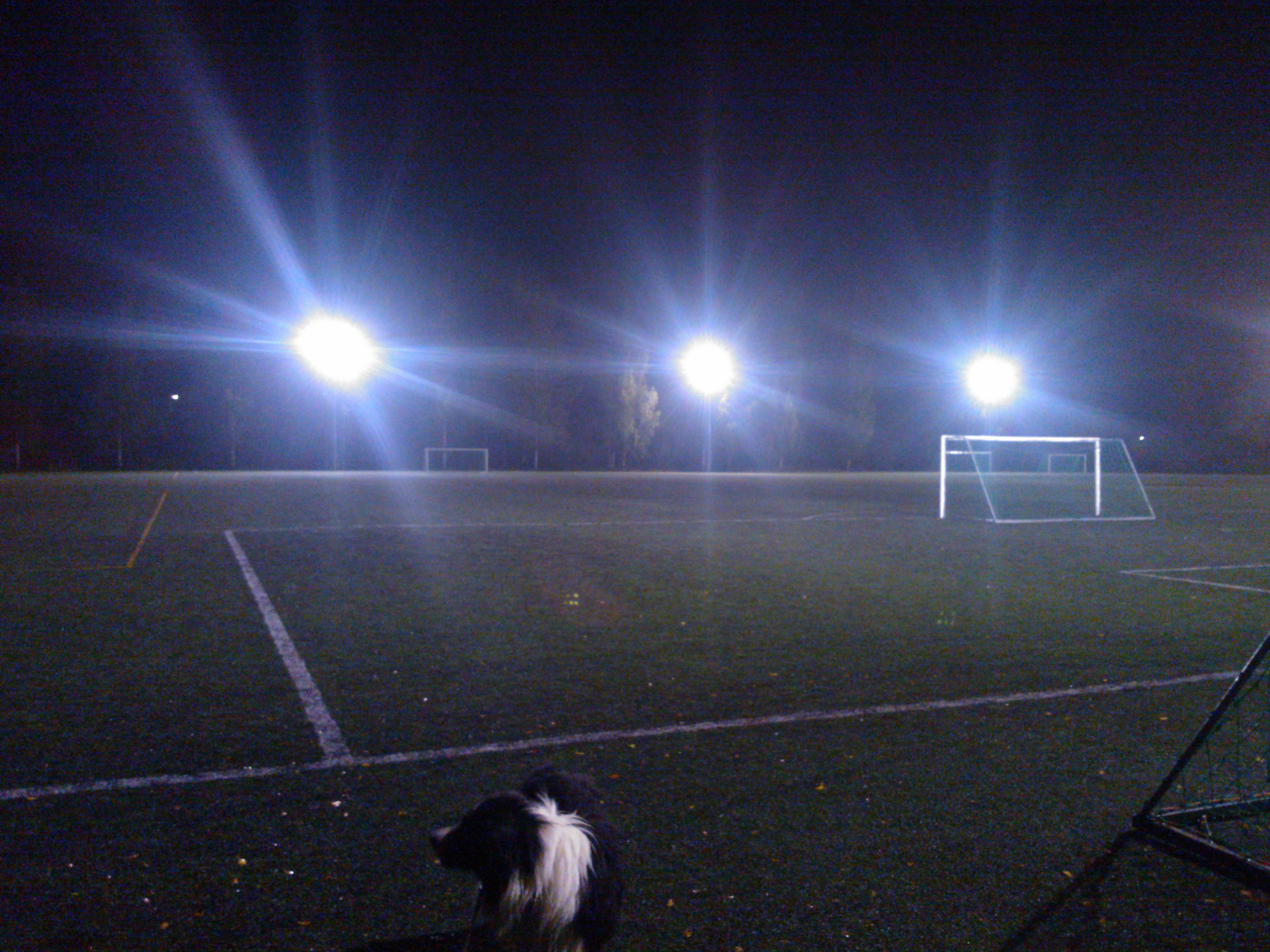 Kaupin jalkapallostadion